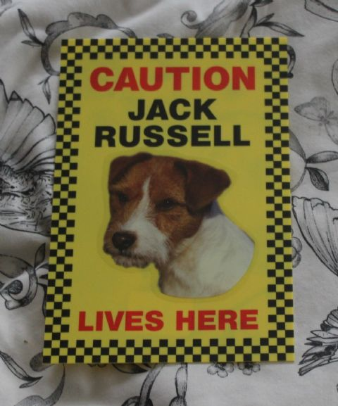 CAUTION JACK RUSSELL LIVES HERE -  DOG SIGN